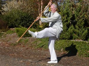 Sifu Mike Barry